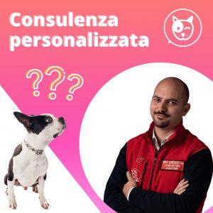 Consulenza cinofila online personalizzata