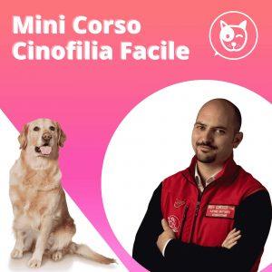 Mini corso addestramento cani