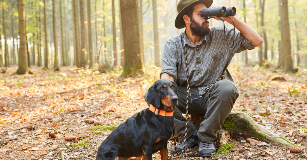 una guida per il cane da caccia